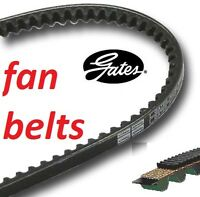 Gates Fan Belt 1225mm 9.5mm section 6229MC (fan alternator v-belt) AV 10