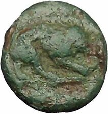 PLAKIA in MYSIA 350BC Cybele Lion Genuine Authentic Ancient Greek Coin i49807