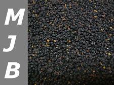 500g Holunderbeeren, Sambuci nigri (15,90 €/ 1000g )  getrocknet, natur,Holunder
