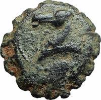 DEMETRIOS I Soter RARE R3 Ancient Seleukid Greek Coin HORSE ELEPHANT i75663