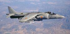 AV-8 Harrier II AV8 GR7 VSTOL Airplane Wood Model Big