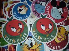 Disney World PASSHOLDER ORANGE BIRD MAGNET (copy)