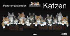 Keith Kimberlin Katzen 2019 - Panoramakalender
