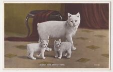 Cats, Manx Cat and Kittens Postcard, B582