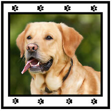 YOUR DOGS OWN PHOTO - CAR / WINDOW STICKER - BRAND NEW