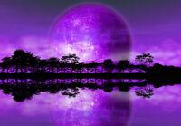 WALLPAPER MURAL PHOTO Rising Moon Alien Planet GIANT WALL DECOR PAPER Purple Art
