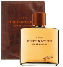 AVON Destination Grand Canyon Eau de Toilette Spray for Him 75 ml New Rare
