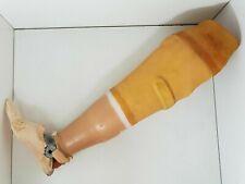 Atèle prothèse de jambe vintage 54 cm objet médical cabinet de curiosité