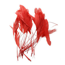30pcs Dyed Rooster Cock Shell Feather 4.3 - 7.5 Inch Red Z1S2