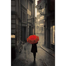 """Red Rain by Stefano Corco 24x36"""" Print"""