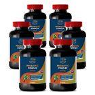Probiotic Complex - Advanced Blended Formula - 6 Bottles - 360 Ct