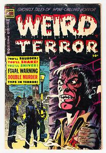 WEIRD TERROR #13 DON HECK CLASSIC PRE-CODE HORROR 1954!