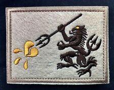 Naval Special Warfare Group NSWDG DEVGRU NAVY SEAL Team 6 Gold Team Patch TAN