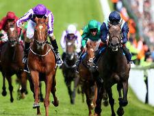 The Lay Factors Horse Racing Betfair Betting System