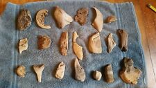 Lot of 20 Pieces of Authentic Unique Pieces of Driftwood from Lake Michigan