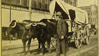 SRppc Postcard OMAHA NEBRASKA  DELIVERY WAGON HORSE DRAWN, GROCERY STORE