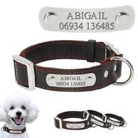 Collares de cuero para perros personalizado Placa identificacion Nombre Grabado