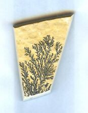 #1-3 All Natural Dendritic Fossil Cabochon For Jewelry
