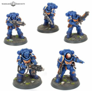 5 Primaris Heavy Intercessors Kill Team Pariah Nexus Warhammer 40K Space Marines