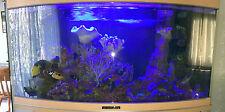 Marine Tank Only Aquariums