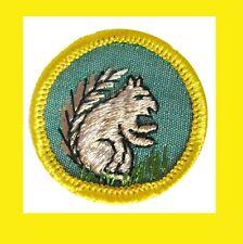 Mammal Cadette Girl Scout Euc Badge Animal Kingdom 1960s Squirrel Rare Combine