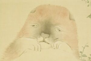 """PUPPY JAPANESE PAINTING Art Old Hanging Scroll 53.3"""" Dog Japan ANTIQUE PIC b737"""