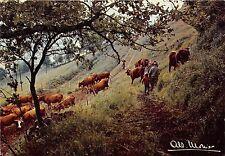 BR13970 Prestige de la terre Sur les pentes arbre trees cow vaches   france
