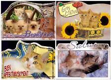 Set lot 4 pcs Pussy Cat Kitten Pc post card 2000th feline unused France Lovely!