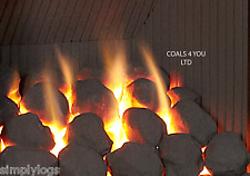 30 LARGE CAST GAS FIRE REPLACEMENT COALS COAL OVAL CERAMIC NEW SELLER 65/70MM