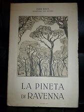 LUIGI RAVA - LA PINETA DI RAVENNA - ROMA INDUSTRIE TURISTICHE 1926