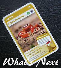 Woolworths<AUSSIE ANIMALS><Series 2 Baby Wildlife>CARD 31/36 WATER Fiddler Crab