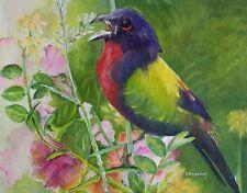 "Painter Suzanne Obrand, Holocaust Survivor, Watercolor ""Colorful Bird"""