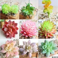 Fun Artificial Succulents Plant Garden Miniature Fake Cactus Home Floral Decor