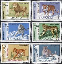 Roumanie 2000 Lion/Tigre/Léopard/COUGAR/Animaux/Nature/faune 6 V Set (b5064)