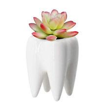 Ceramic Vase Decorative Pen Holder Flower Vase Succulent Pot Floral Planter