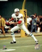 """Bob Griese Miami Dolphins NFL Action Photo (Size: 8"""" x 10"""")"""
