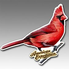 Wildlife Auto/Car/Truck Magnet-Cardinal-by American Expedition-Made in Usa