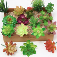 Mini Artificial Fake Succulent Plant Cactus Home Garden Office Miniature Deco Hu