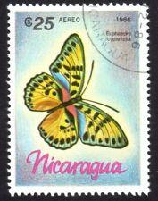 Euphaedra cyparissa, True forester, butterfly