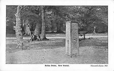 BR96969 rufus stone new forest howard 302  uk