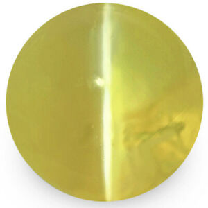 IGI Certified SRI LANKA Chrysoberyl Cat's Eye 1.88 Cts Natural Untreated Oval