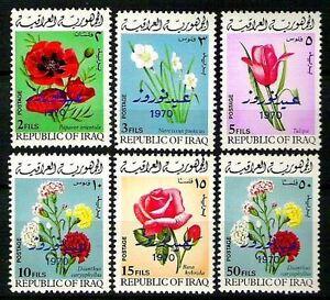 IRAQ Flowers Poppies Tulip Rose Overprint Nowrooz Novrooz Festivals SC# 532 1970