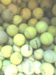 30 Used tennis balls, all top quality makes, ideal for dogs.