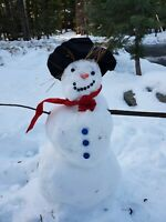 Real Build Your Own Snowman Kit, Felt Hat, Scarf, Nose, Buttons, Eyes, Christmas