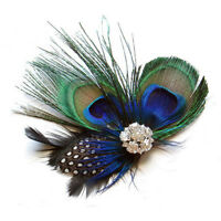 Cute Peacock Feather Hair Clip CT