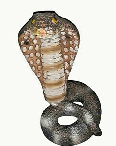 "6.5"" King Cobra Coiled Snake Miniature statue"