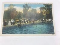 A Wet Spot Swimming Pool Allegany State Park NY New York Linen Postcard Vintage