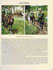 Jäger zu Pferde/Chevaulegers - Waffengattungen - Das Militär