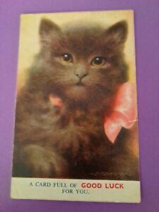 Vintage Cat Postcard.  Gray kitten pink bow. Bamforth.