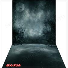 Cloudy10'x20'Computer/Digital Vinyl Scenic Photo Backdrop Background SX709B88